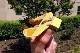 Cicadas-drone